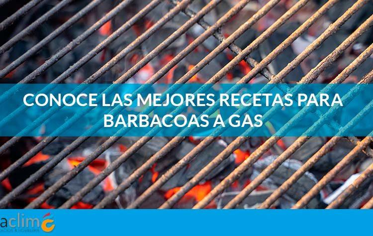 recetas barbacoa gas fibraclim